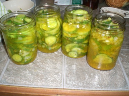 Sweet and Sour Refrigerator Pickles