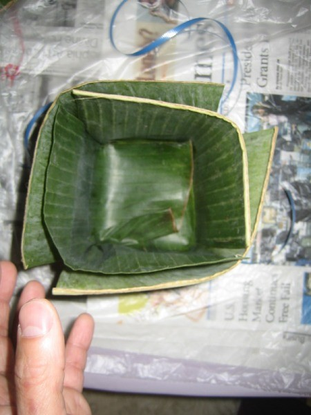 banana leaf square container