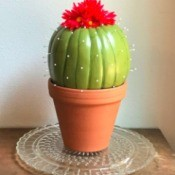 Foam Pumpkin Faux Cactus - enjoy your new decor piece