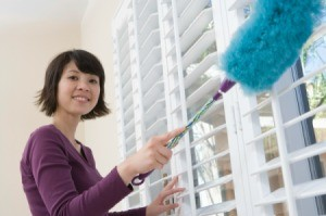 Use a duster on blinds.