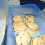 Chocolate Chip Cookies in container
