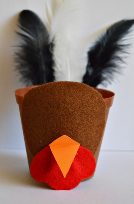 Goggle-Eyed Turkey Candy Box - make orange beak from cardstock and glue in place above the wattle