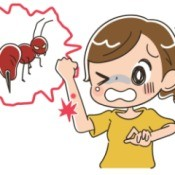 illustration of a girl with a fire ant bite.