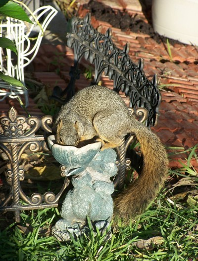 A squirrel eating from a bird feeder.