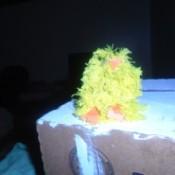 Little Pom Pom Chick - pom pom chick