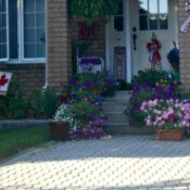 A front door with flowers on the staircase and yard.
