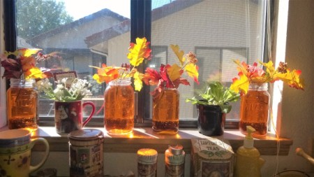 A collection of jars displayed in a window, with orange colored water.