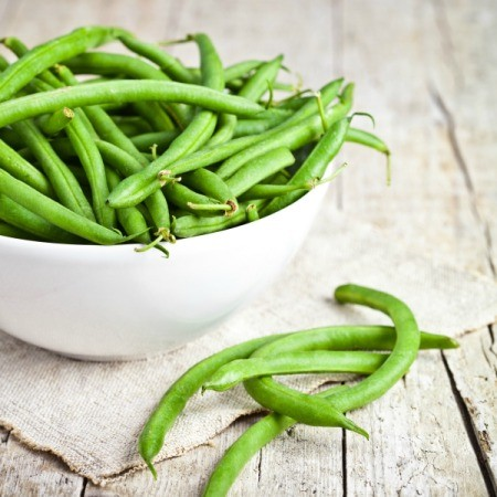 Comparing Bush Beans and Pole Beans
