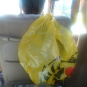 A carabiner for holding a plastic bag on the back of a car seat.