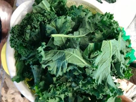 rinsed kale in colander