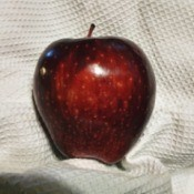 A Red Delicious apple on a white cloth.