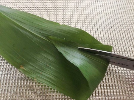 Traditional Leaf Bowl - cut two slits on each end of the leaf