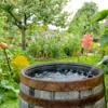 Rain Barrel in Garden