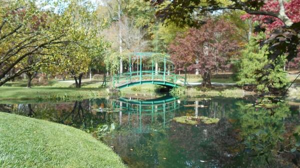 Fall Colorfest (Gibbs Garden, GA)   ThriftyFun