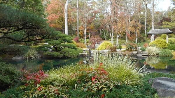 Fall Colorfest (Gibbs Garden, GA) | ThriftyFun