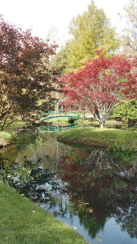 Fall Colorfest (Gibbs Garden, GA) - water and bridge.