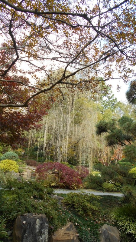 Fall Colorfest (Gibbs Garden, GA) - gardens.