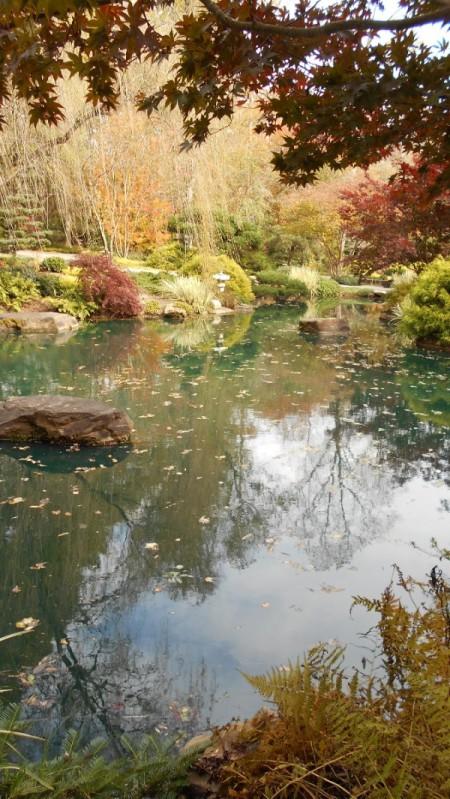 Fall Colorfest (Gibbs Garden, GA) - pond with fall color.