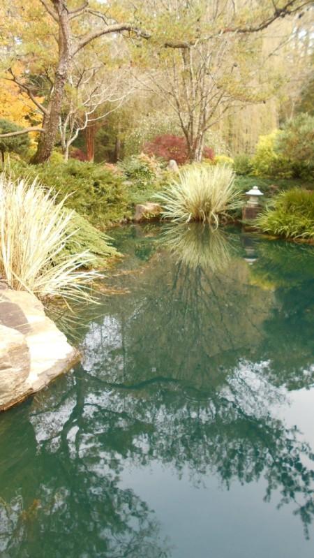 Fall Colorfest (Gibbs Garden, GA) - pond.