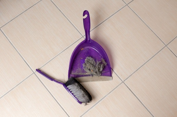 Sweeping Up Dust And Hair From Floor