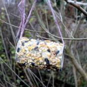 Easy Bird Feeder - hanging feeder