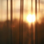 Sunlight coming through sheer curtains.