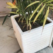 A planter placed so that packages can be hidden behind it.