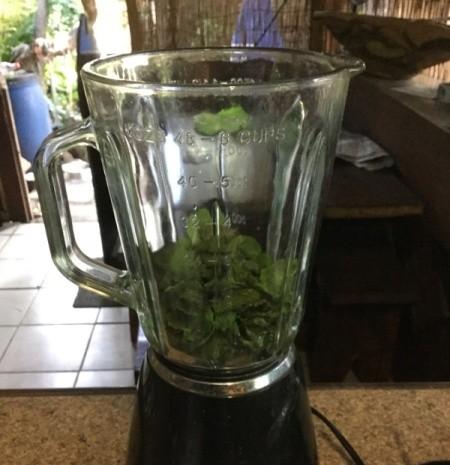 How To Make Fresh Mint Oil