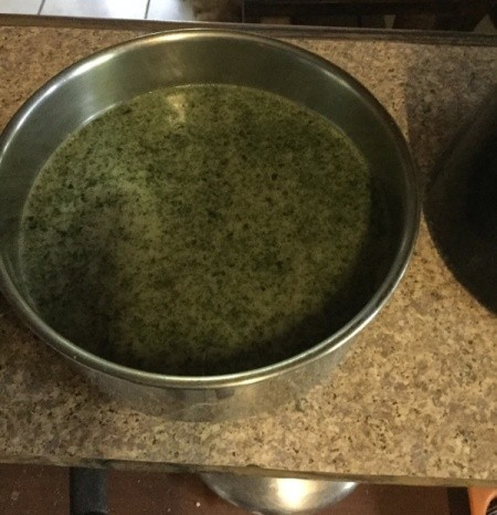 Mint and Oil in pan
