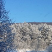A snowy view from my window in Saylorsburg, PA