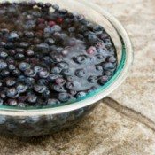 Washing Blueberries in Glass Bowl