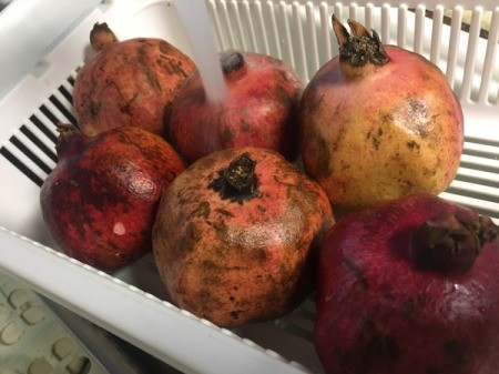 Juicing and Growing Your Own Pomegranates - rinse the outside of the fruit