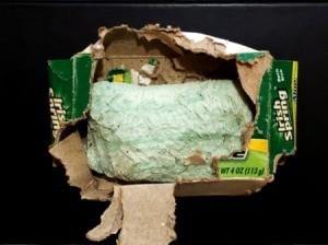 Do Rats Have Flatulence? - nibbled bar of soap