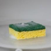 Sponge in Microwave