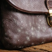 Mildew on Leather Purse