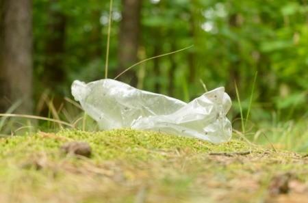 Plastic Bottle Roadside Litter
