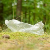 Plastic Bottle Roadside Litter