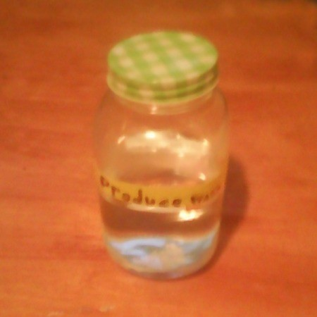 A bottle of homemade produce wash.