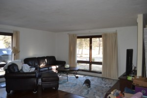 Paint and Curtain Color Advice -  living room
