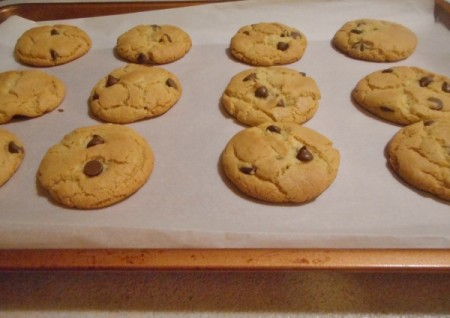 Mom S Best Chocolate Chip Cookies Thriftyfun