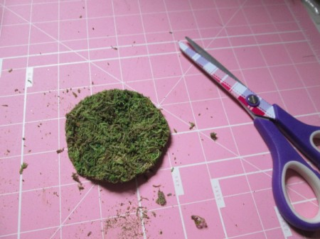 The Smallest Fairy Garden - moss cut to size