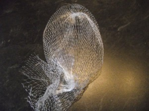 A mesh bag that used to hold garlic cloves.