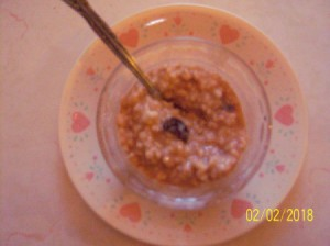 Healthy Oatmeal Pudding in bowl