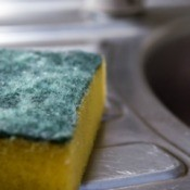 Kitchen Sponge/Scouring Pad Near a Sink