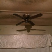 Cause of Mold Growth in a Mobile Home - mold on the ceiling