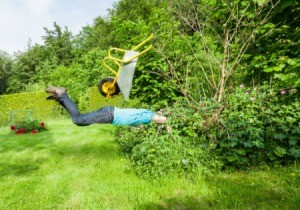 A man falling comically into bushes with his wheelbarrow in the air.