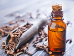 Cloves and Clove Oil