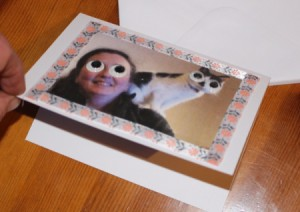 Crazy Wiggle Eye Greetings Card