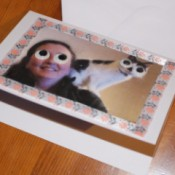 Crazy Wiggle Eye Greetings Card