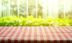 Red and white gingham tablecloth with greenery in the background.
